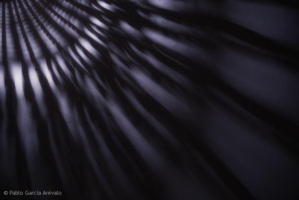 Spider blue light