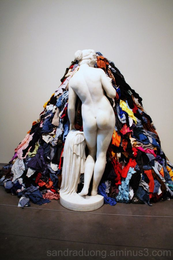 Venus and the rags
