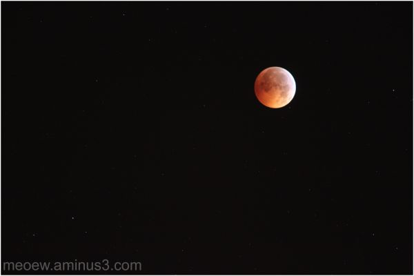 total eclipse 2010
