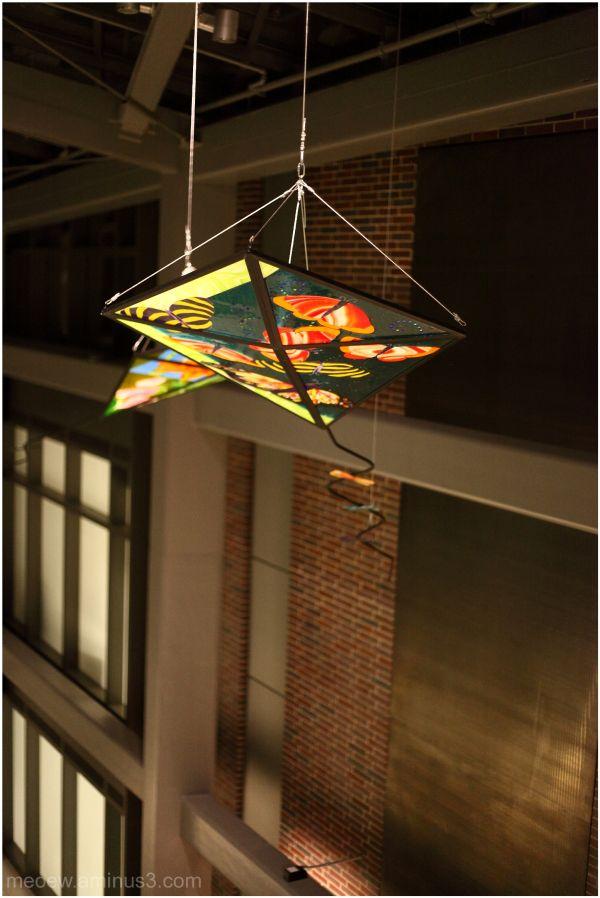 glass kite