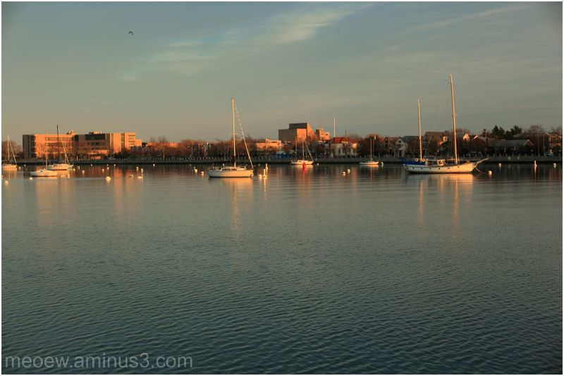 sheepshead bay, nyc