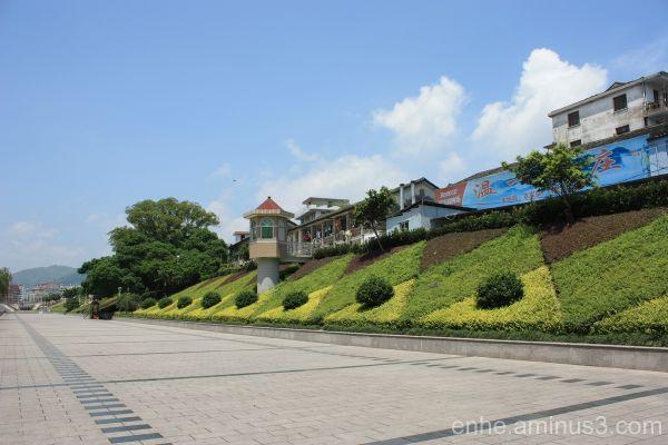 wenxi enhe photoblog 温溪 风光 榕树 china Banyan