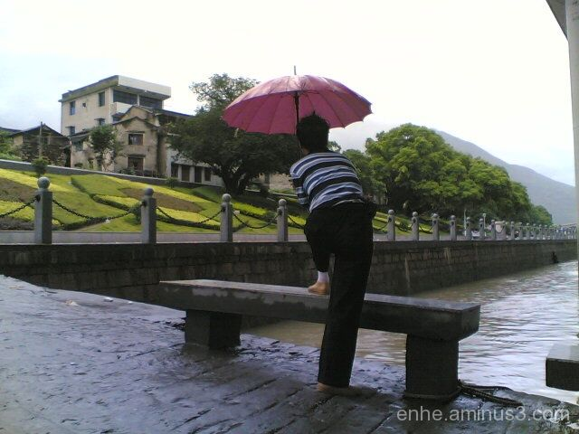 wenxi enhe photoblog 温溪 风光 榕树 china