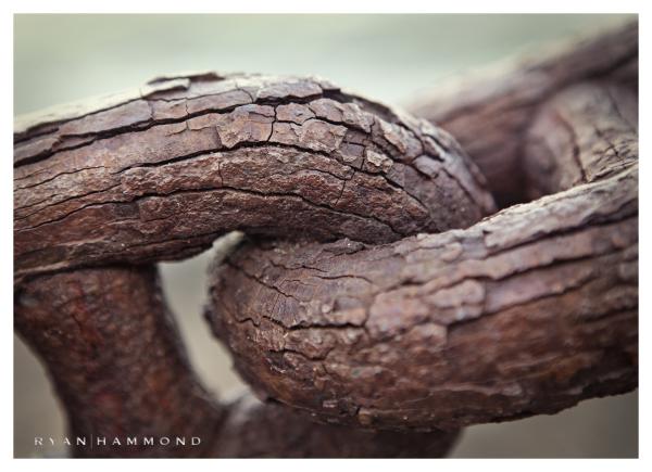 Rusted chain, Tucson Photography, Ryan Hammond