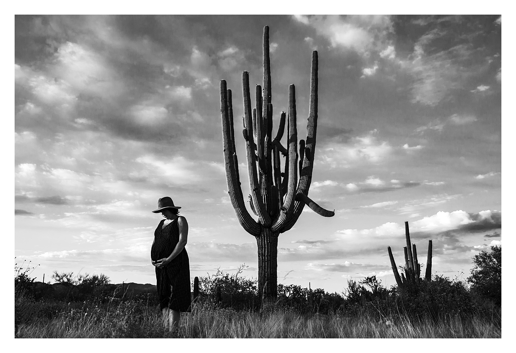 B&W maternity photo wide shot of saguaro Arizona