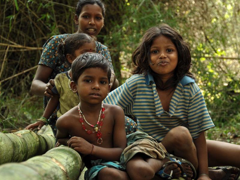 Aadivasi-tribals
