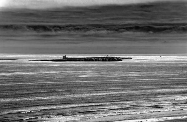 The Inner Farne Island