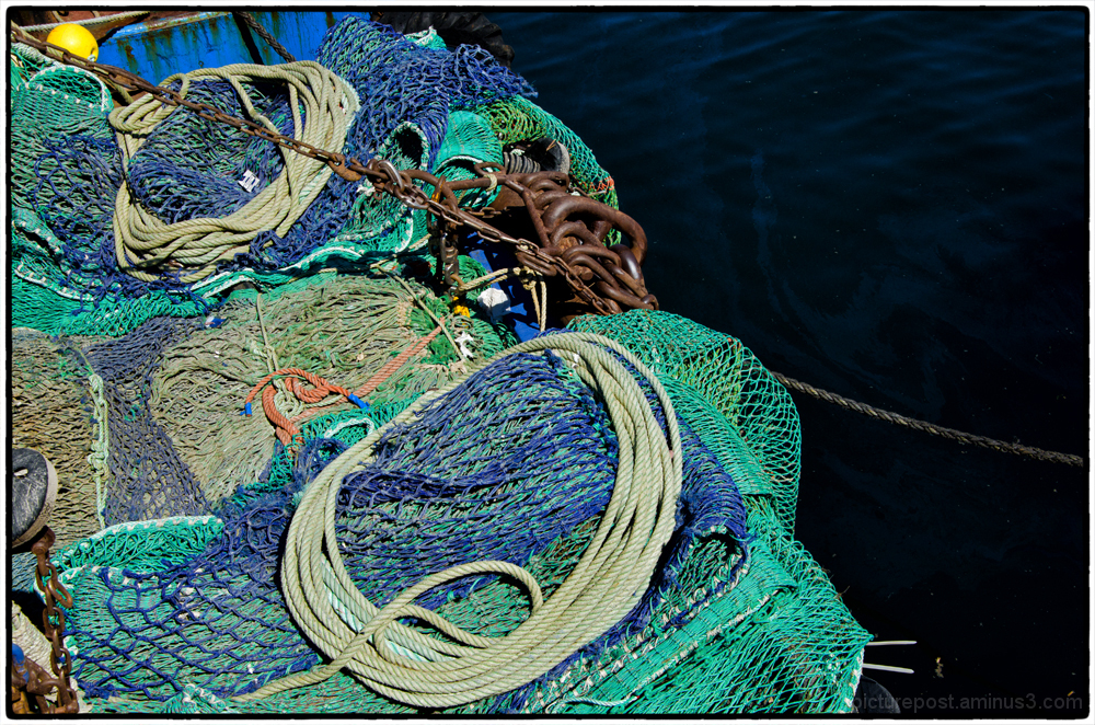 Blue Nets For A Blue day