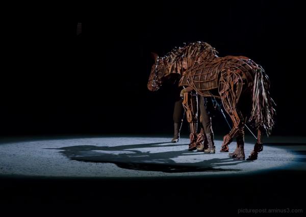 War Horse #3