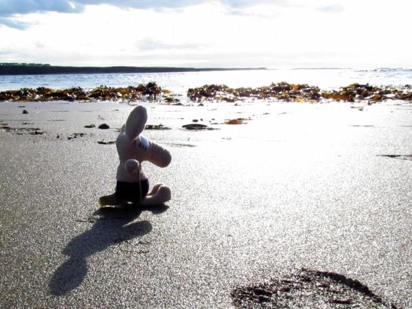 Dreamer on a beach