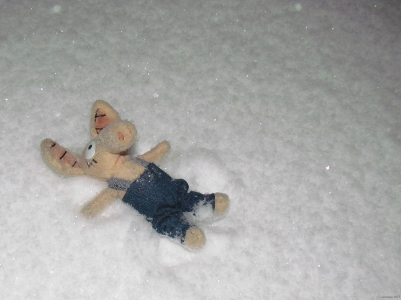 Wagner playing in snow