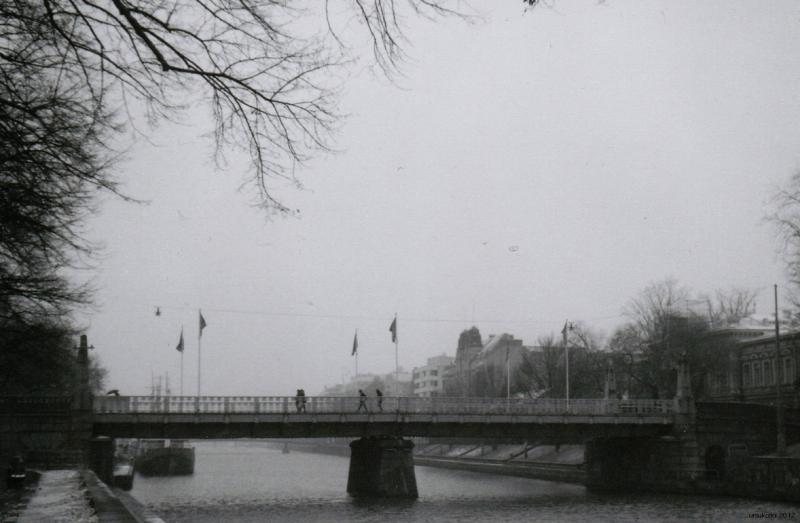 The Bridge of Aura