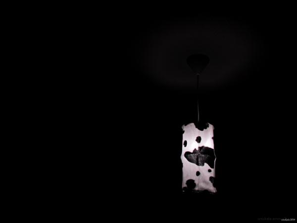 Cow light