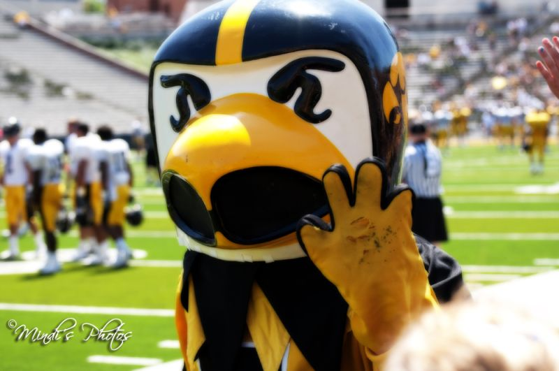 Herky the Orton Effect