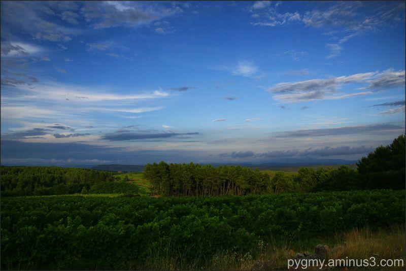 Landscape in Ardeche