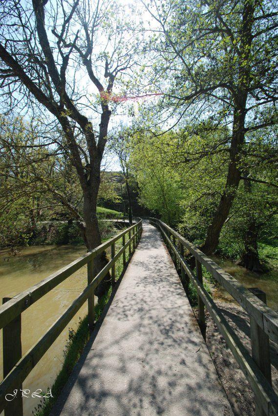 A l'étang St Nicolas #4