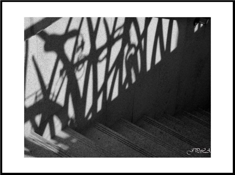 Angers, place du ralliement : ombre