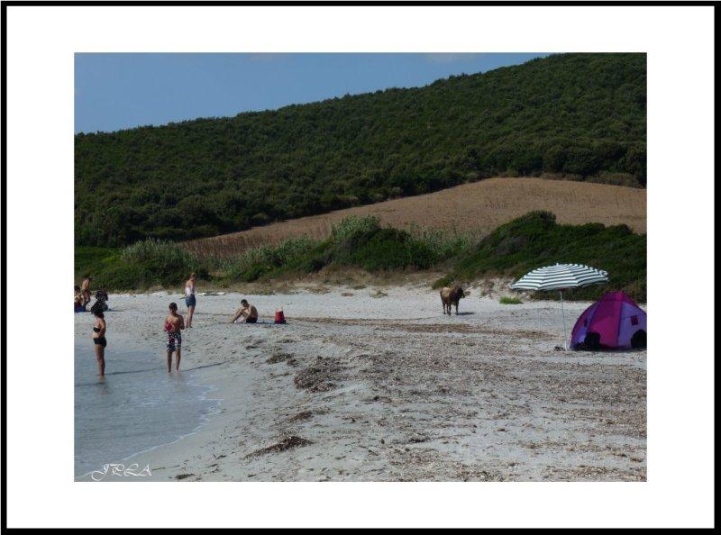 Sur la plage de Tamarone