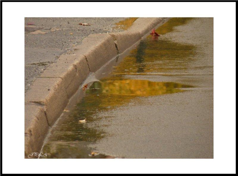 L'automne sous la pluie