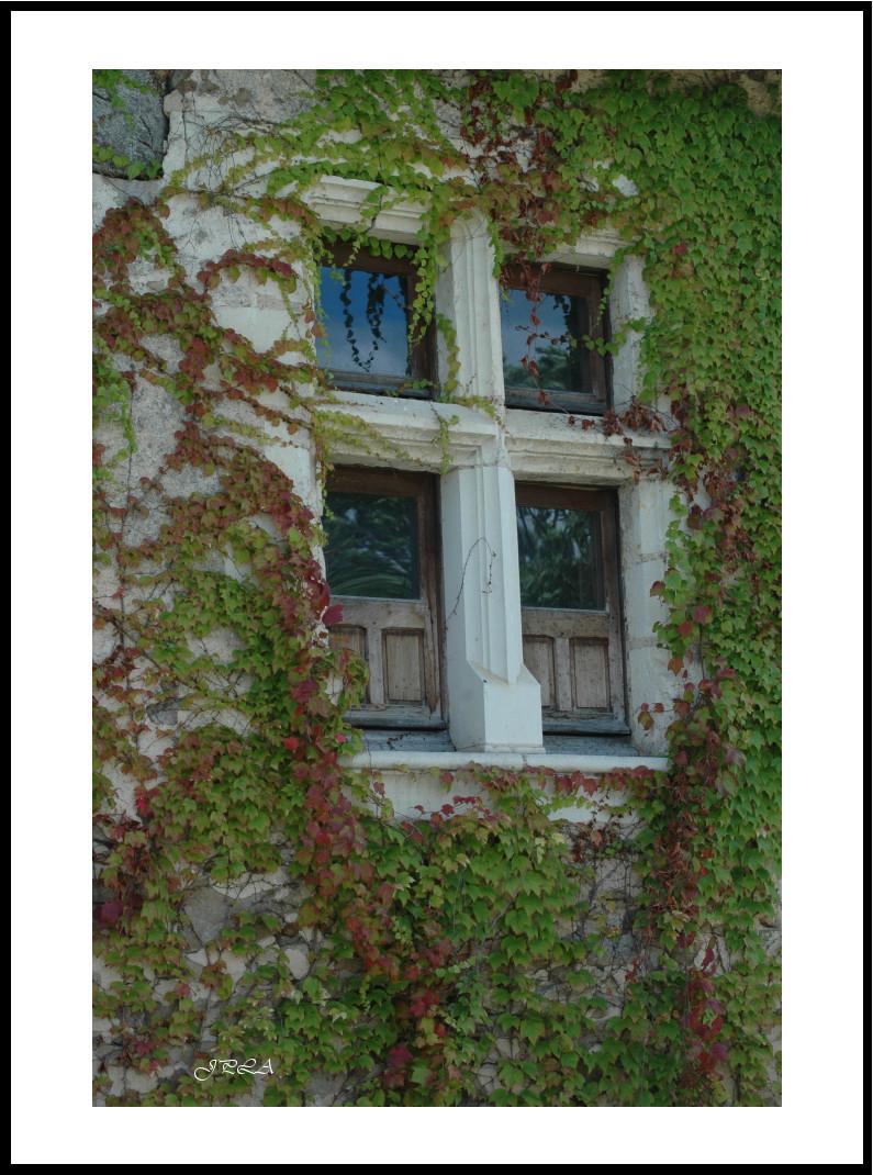A St Germain (hameau dans le 49)...#6