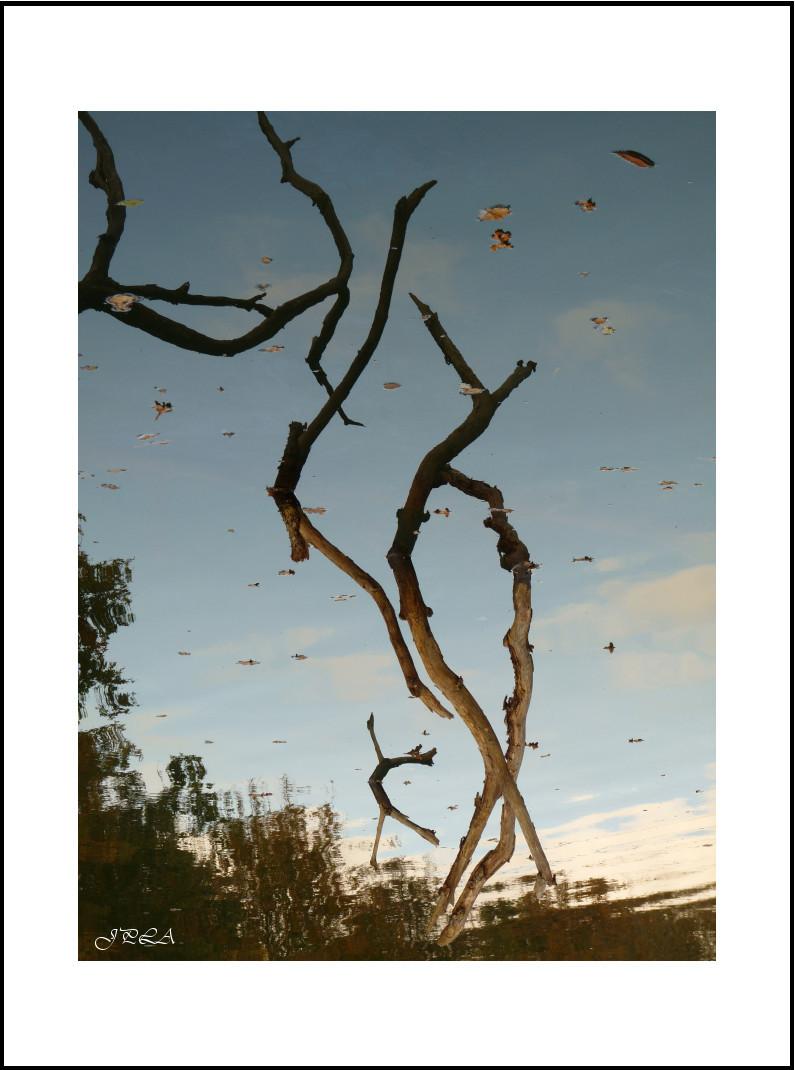 L'automne aux ardoisières #2