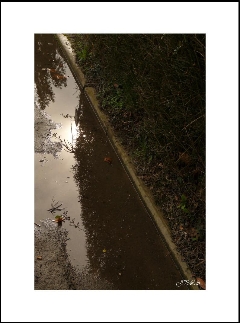 Promenade après la pluie #2