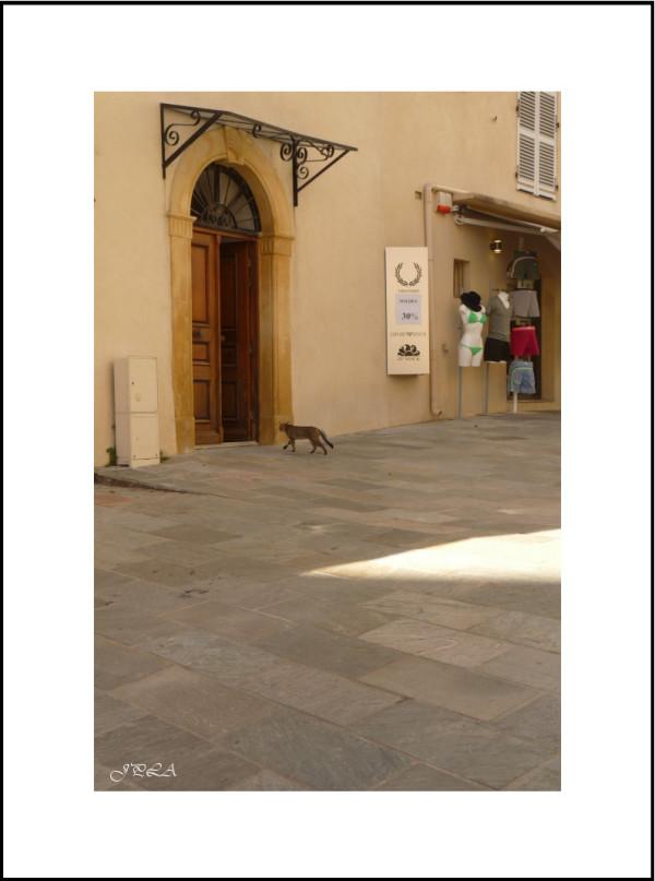 Corse 2013 #21