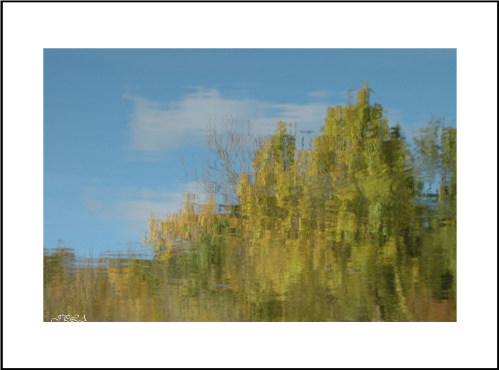Teintes d'automne #2