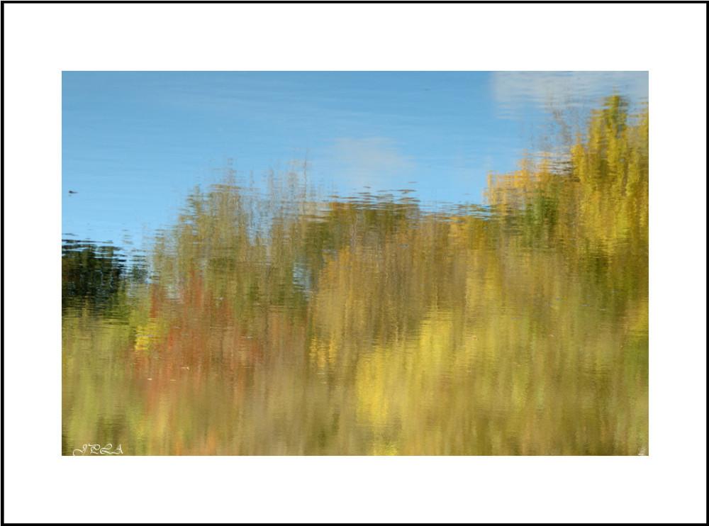 Teintes d'automne #3