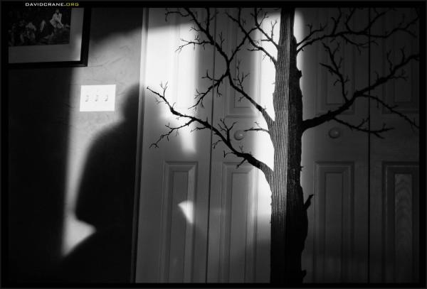 Shadows fall on Riboud
