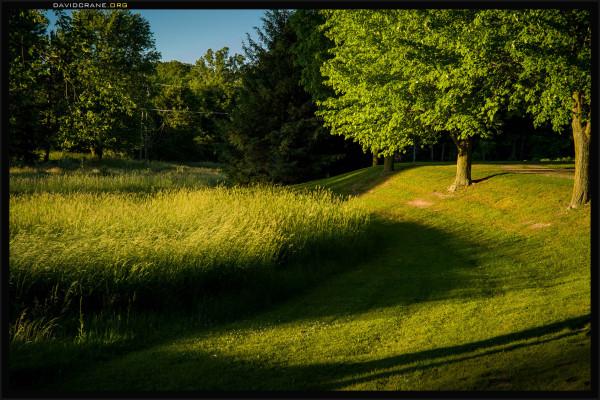 Fields in rural Michigan