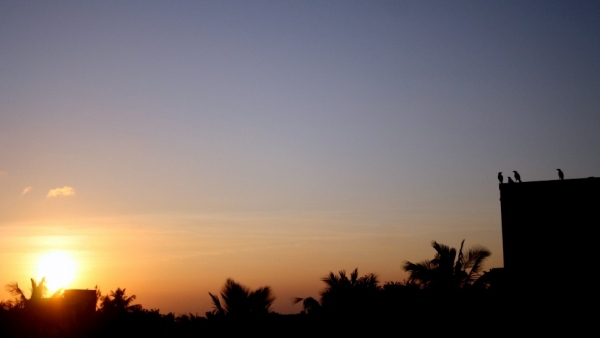 A 'murder'ous sunset rendezvous