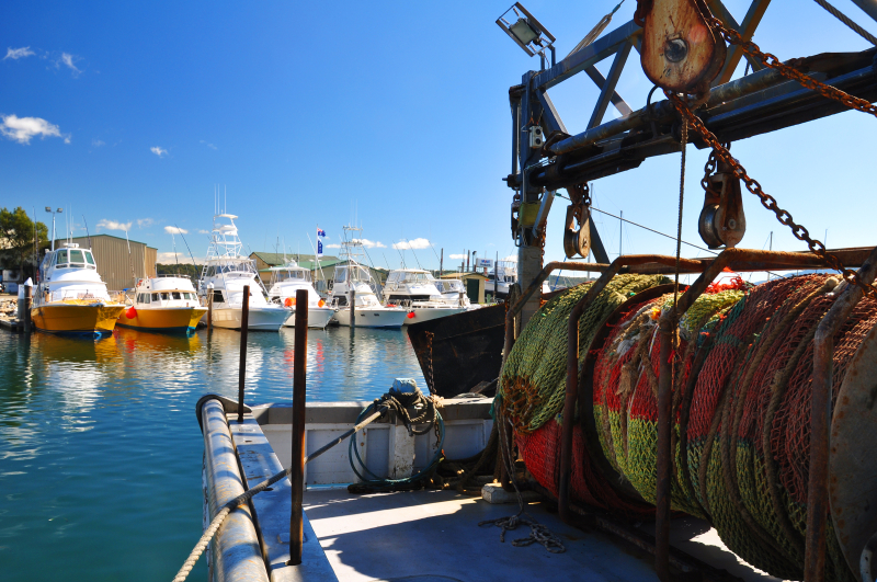 Net on the deck of a fishing boat at Bermagui