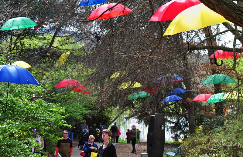 Garden design with umbrellas at Floriade
