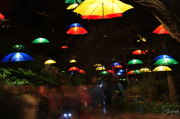 Canopy of umbrellas light up at Floriade NightFest