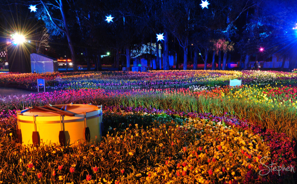 View over the flower beds at Floriade's NightFest