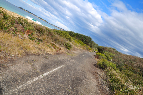 Old Bermagui coast road reclaimed  by nature