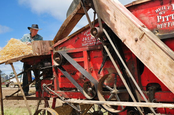 Steam powered thresher machine
