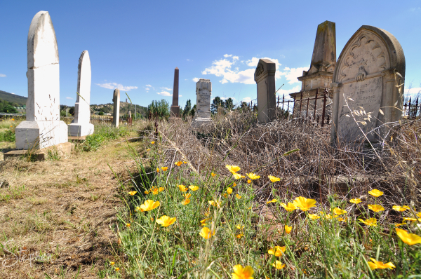 Historic graves at Goulburn