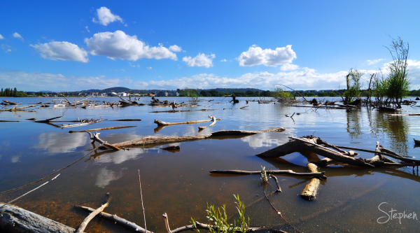 Flood debris in Lake Burley Griffin