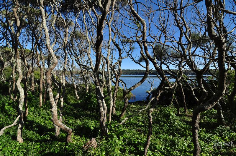 Brou Lake meets the coastal shoreline
