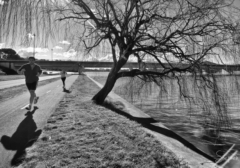 Joggers on the path around Lake Burley Griffin