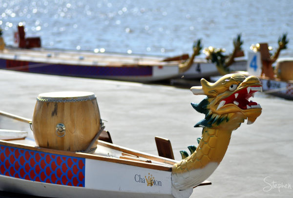 Dragon boat racing on Lake Burley Griffin