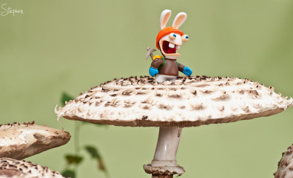 Rabbid figurine climbing mushroom