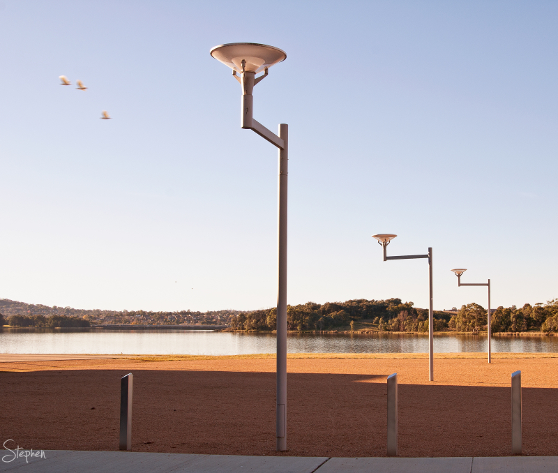 The line of lamp posts caught my eye at first. But the [i]power of three[/i] charmed me when these birds crossed my lens to add a sense of movement. 