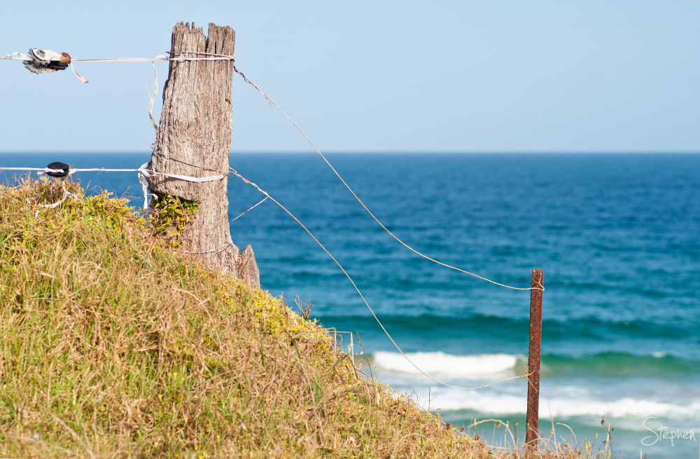 Fence line meets ocean at Little Lake near Tilba