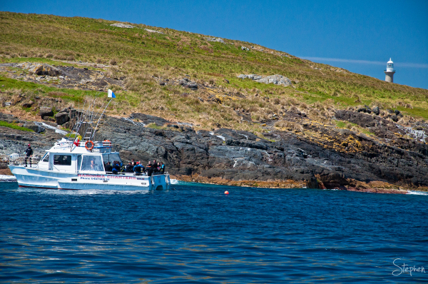 Dive boat charter at Montague Island