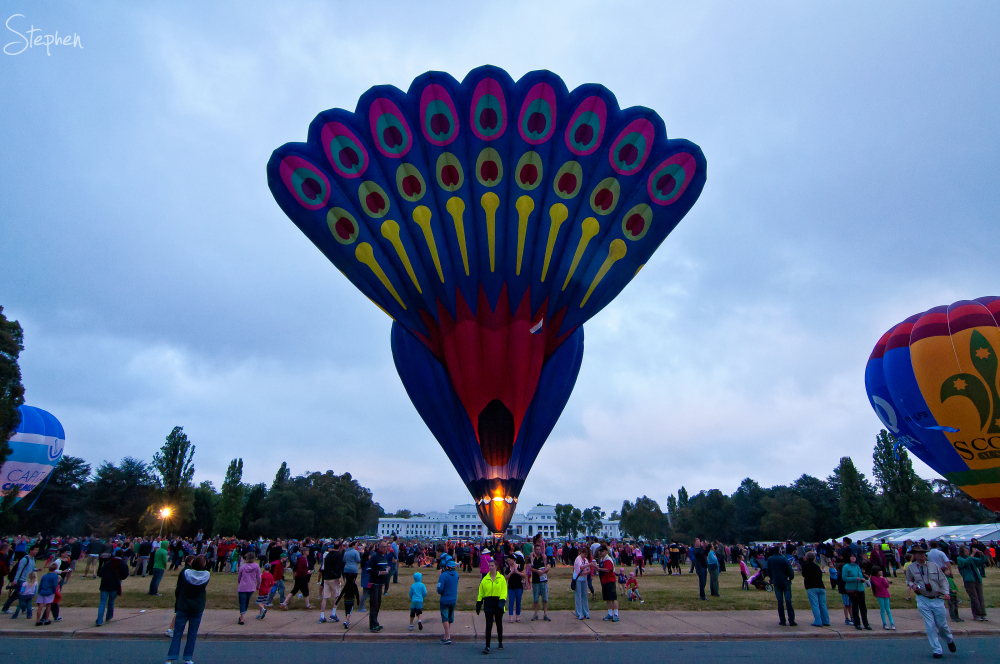 Peacock design at Canberra Balloon Festival