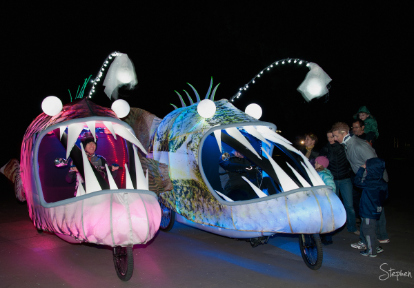 Angler Fish at Enlighten festival in Canberra
