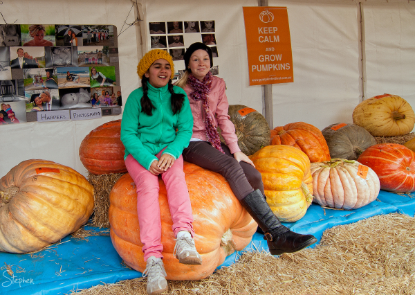 Winning pumpkins at Collector Pumpkin Festival